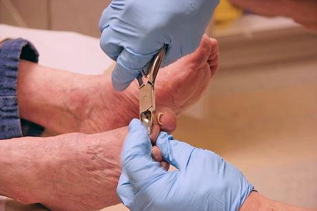 toenail cutting.jpg