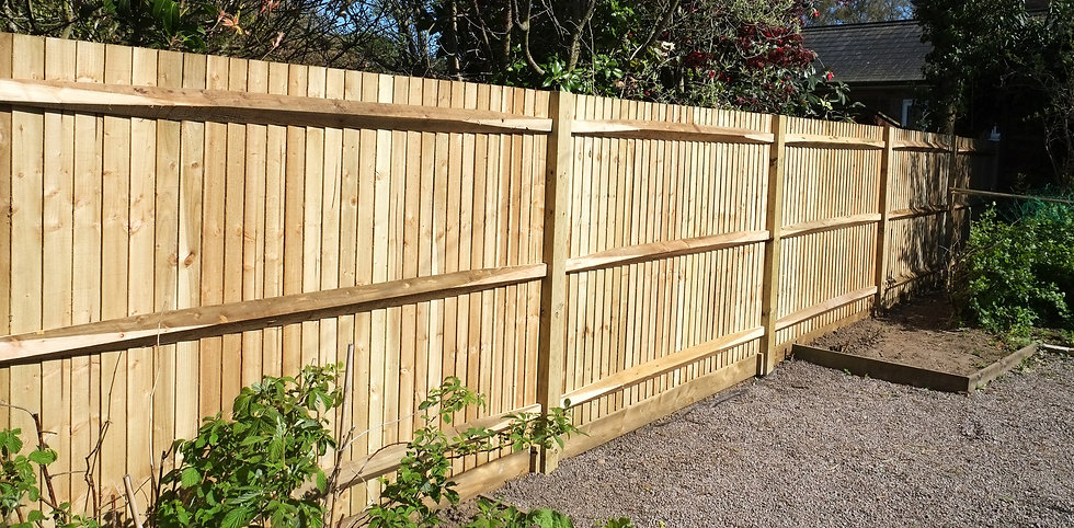 A large new 5ft fence_edited.jpg