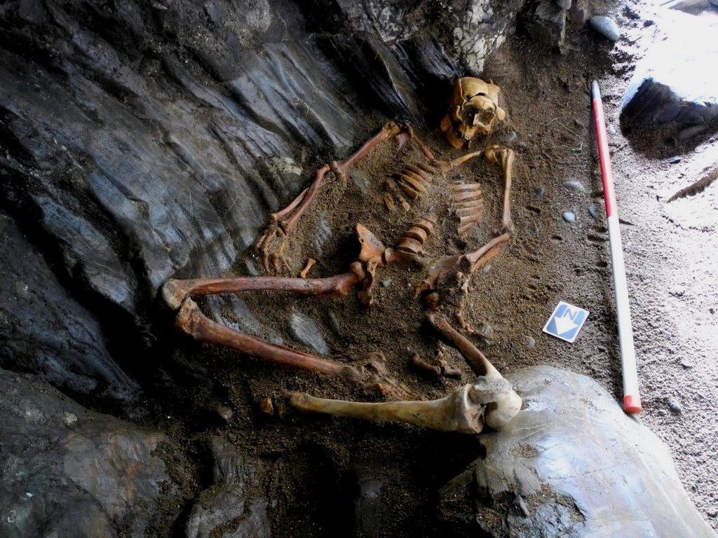 Rosemarkie Caves Project, skeletal remains