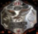 HVW Championship.png