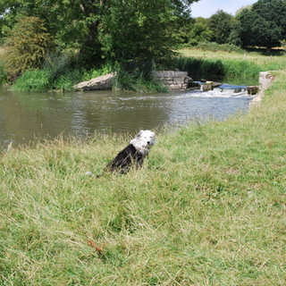 Dave by the River Thame, the focus for our environmental improvement schemes.
