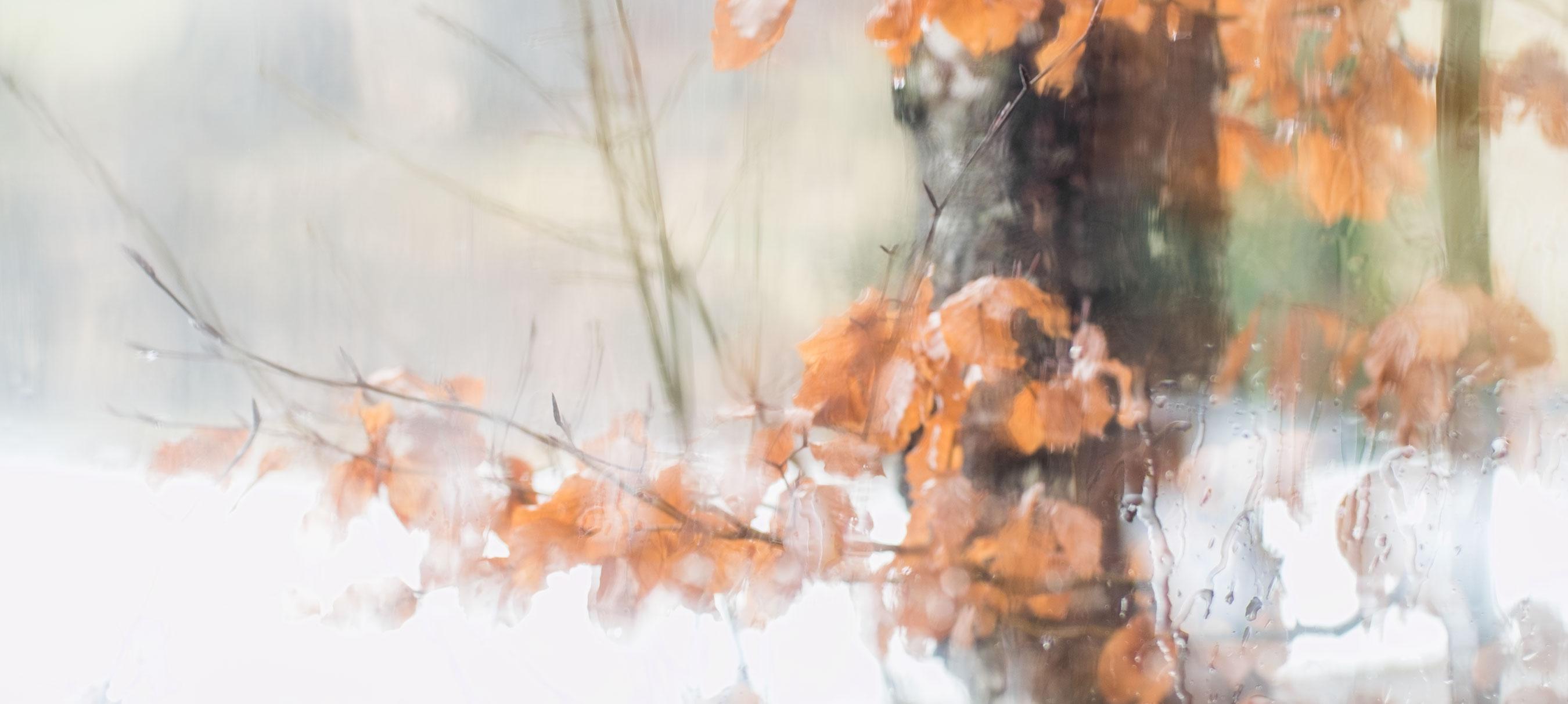 Fotoprojekt Regenmalerei