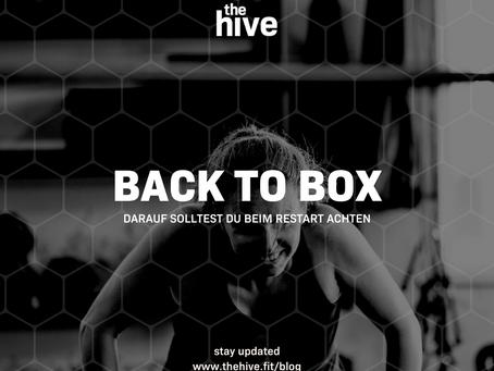 Back to Box: Darauf solltest du beim Wiedereinstieg achten