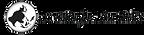 aas-logo.png