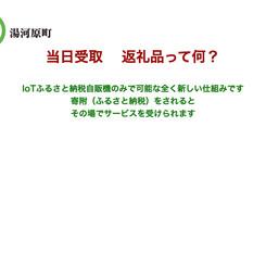 ふるさと納税自販機(ふるさと納税仕組み).m4v