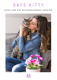 Tipps für katzensicheres Zuhause
