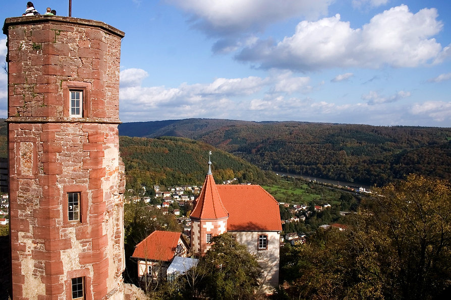 dilsberg-577513_1920.jpg