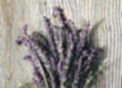 Aveda Lavender