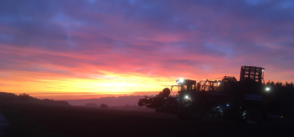Holmer lever de soleil.jpg