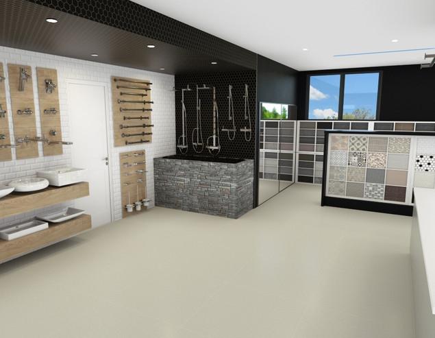 bathroom selection concept.jpg