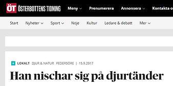 Reportage om Veterinärtjänster i ÖT