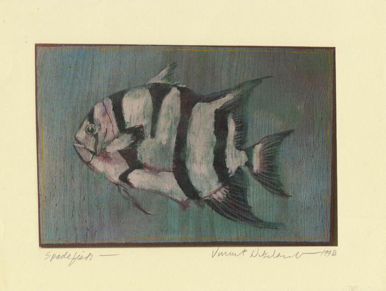 Spade Fish by Vincent DiGerlando