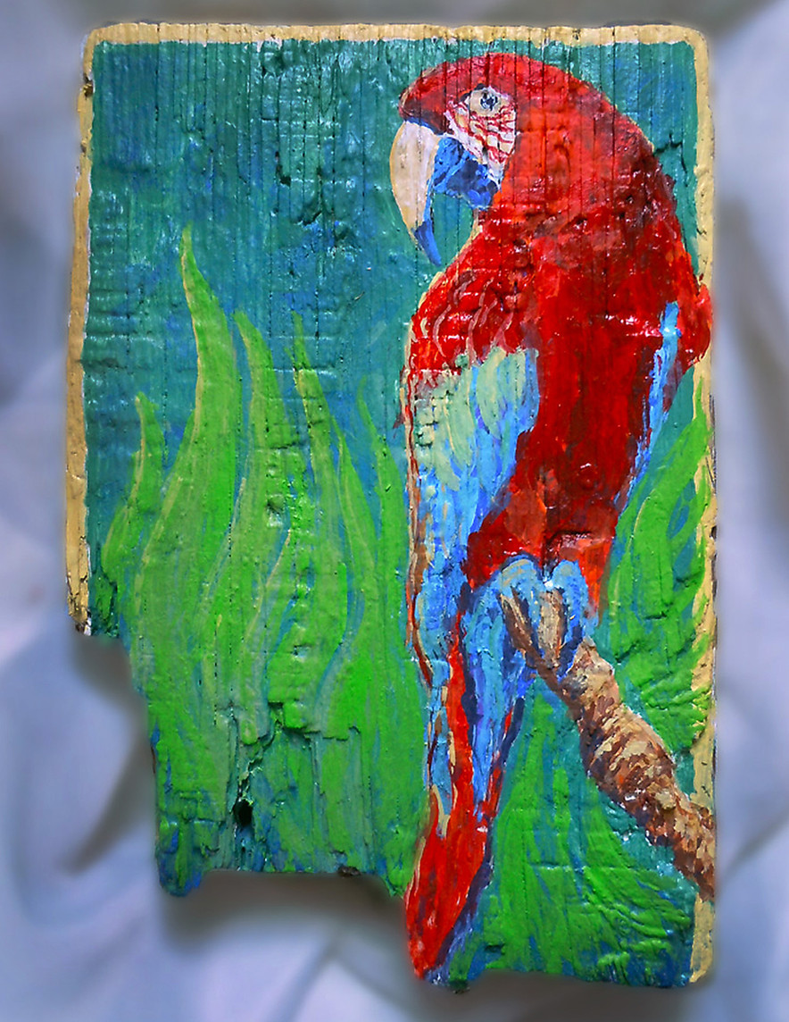 Parrot In The Green by Vincent DiGerlando