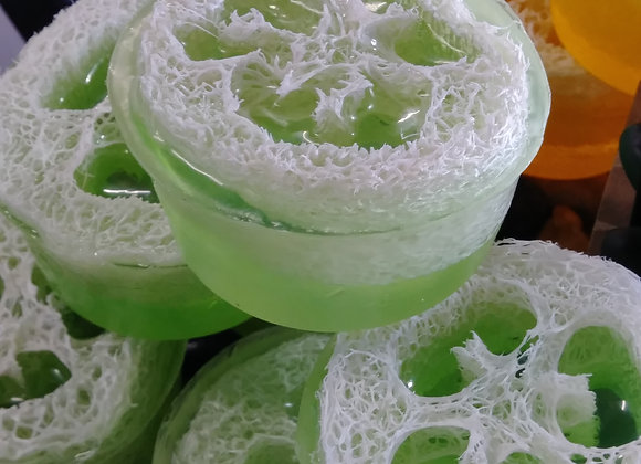 Mini Essential Oil Luffa's