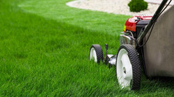 Cut Grass for Single Mom's