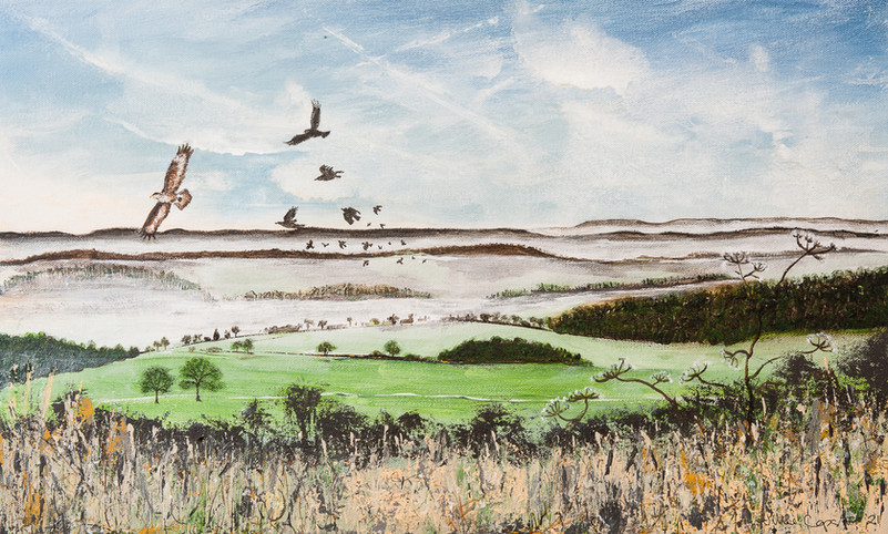Newlands Buzzards 2
