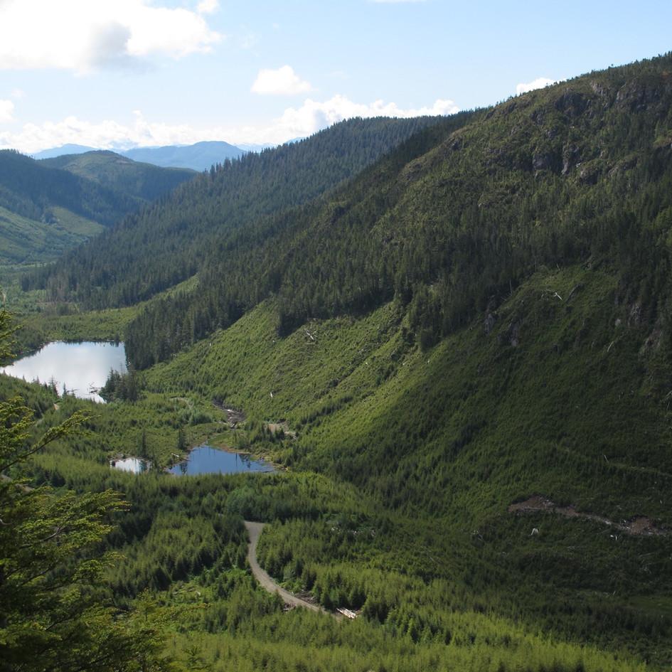 North Island Copper Project