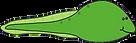 tadpole class Colorado Christian Montessori