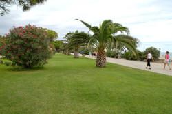 Location appartement argelès