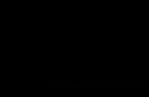 cco final logo-2w.png