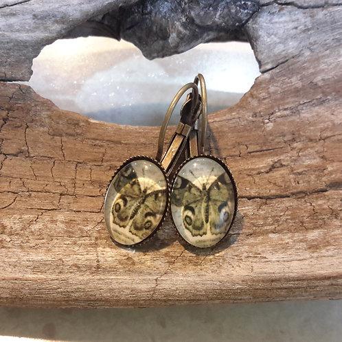 Mimi oval butterfly ear rings