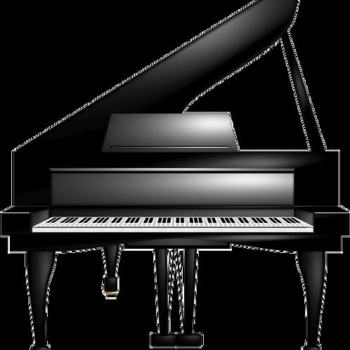 Visio. 30 minutes cours de Piano.