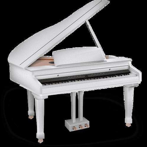 Copie de VISIO. 5*45min de cours de Piano