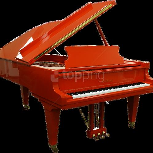 VISIO. 45min de cours de Piano