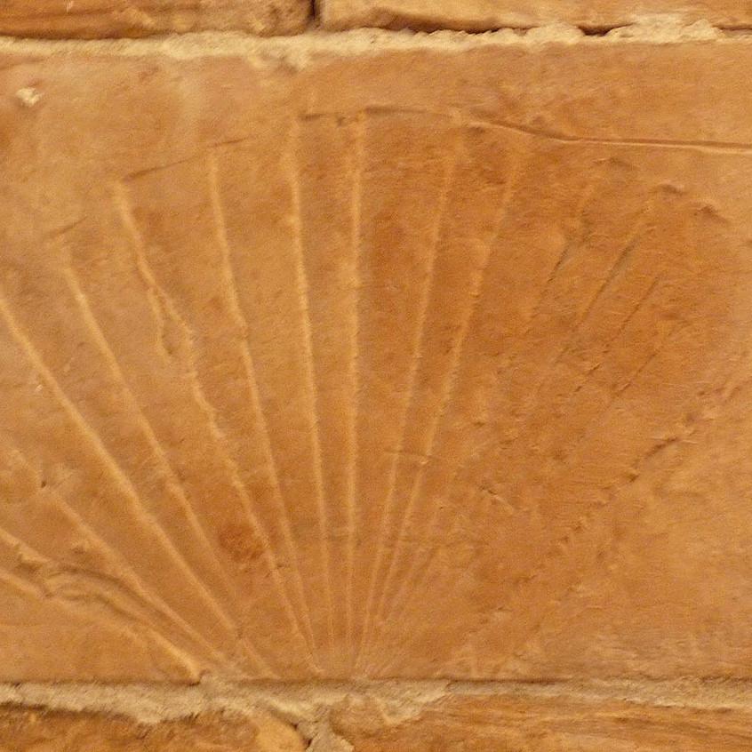 Detail Parefeuilles