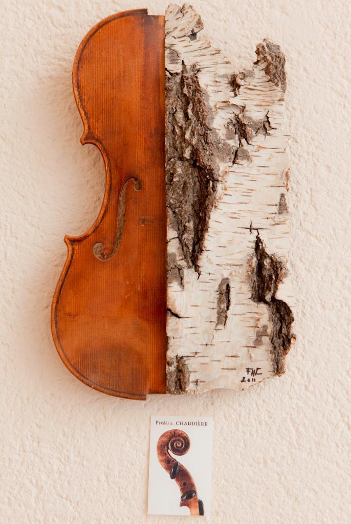 Greffes de violon