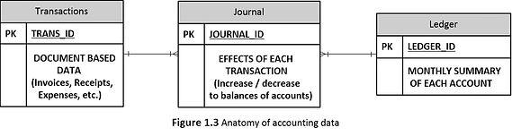 1.3 Anatomy of Accounting Data.jpg