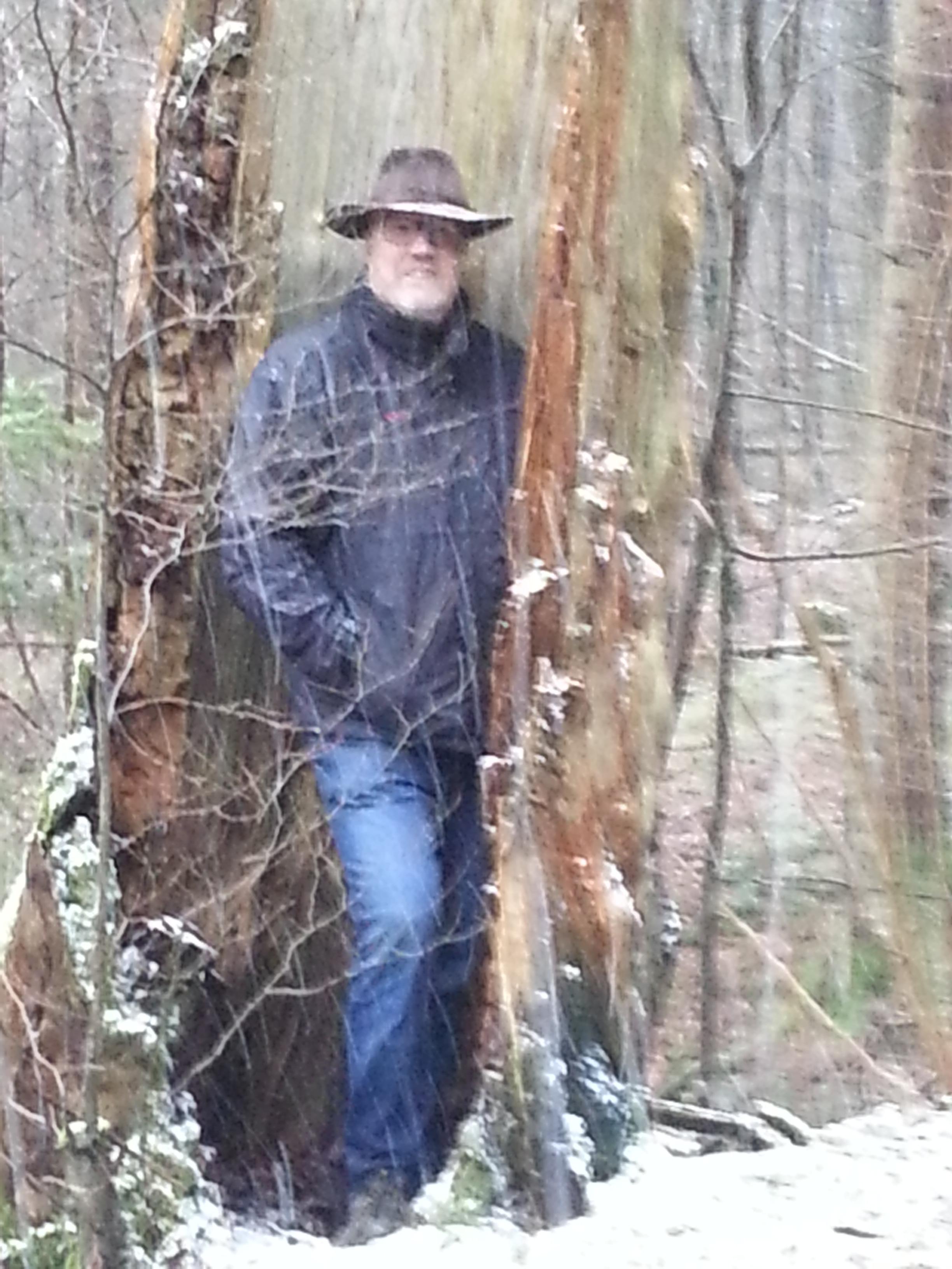 Peter im hohlen Baum