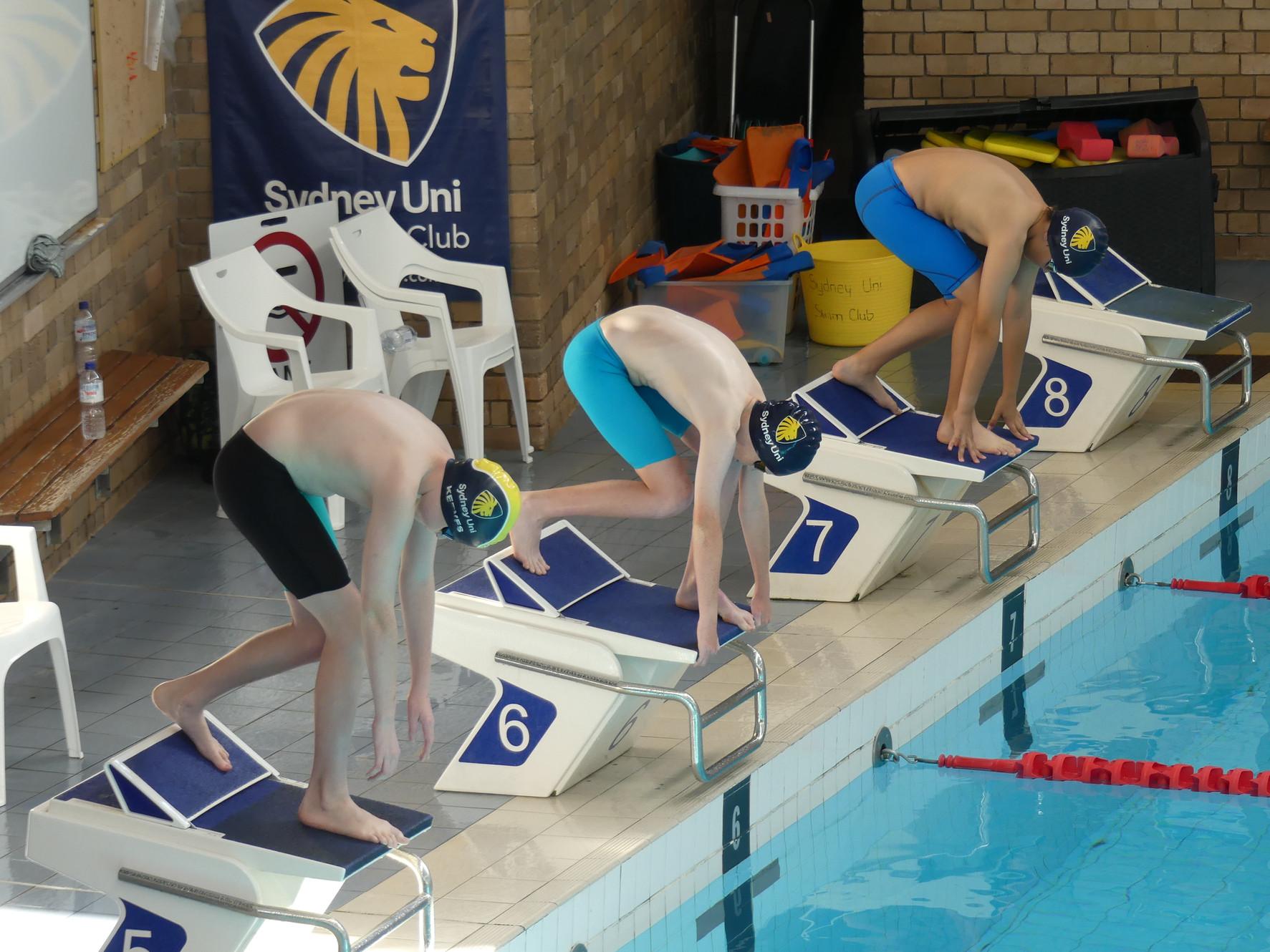 Swimming Club | Sydney University, Darlington | Lessons