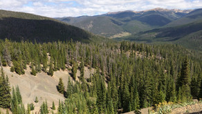 In the Footsteps of History, Breckenridge CO
