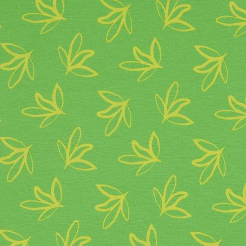 Organic Baumwoll Jersey Katta Kombi grün