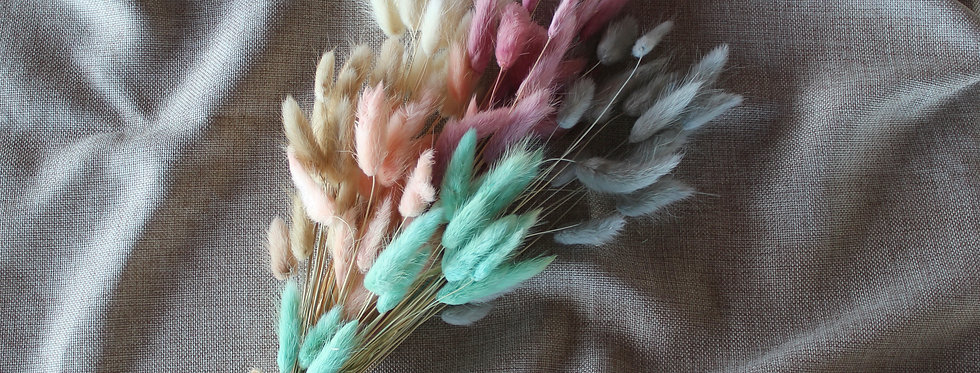 Ramillete Lagurus Pastel