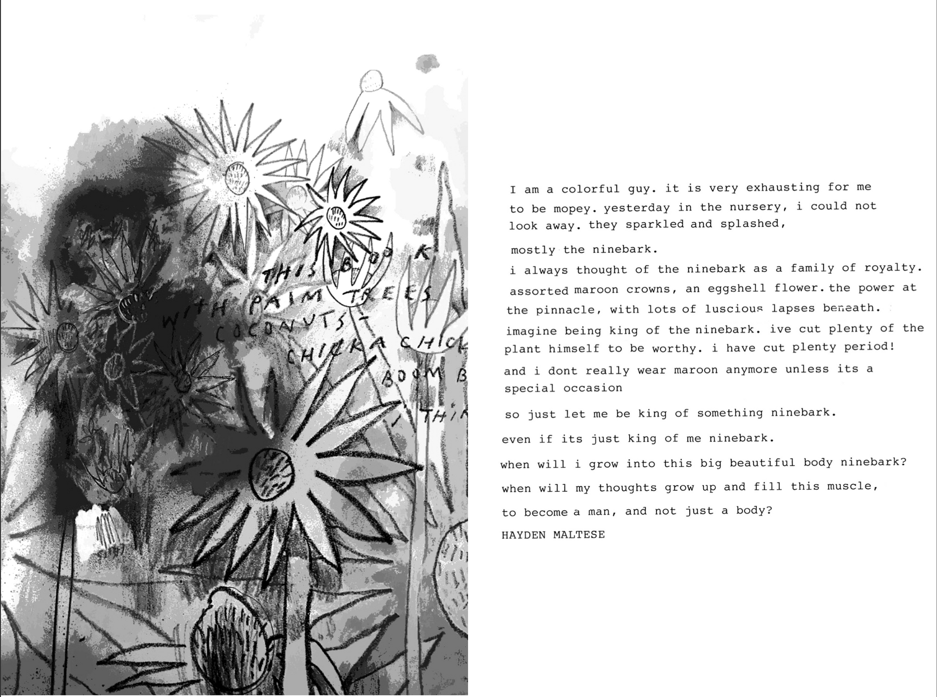 """Page from """"Honeysuckles"""", 2019"""