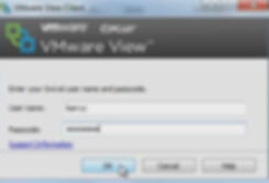 VMware_View_51_Swivel_integration_Client