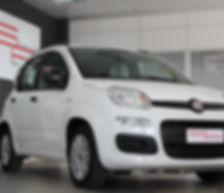 Fiat Panda - Auto Licata - Sivauto