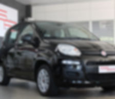 FIAT NEW PANDA - S.I.V.AUTO PENDOLINO