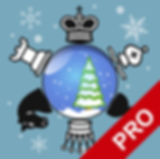 logo_512_winter_pro.png