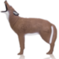 Delta_Howling_Coyote_15.png