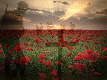 Memorial Day – Remember the Fallen: Dedicate a Poppy