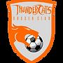 thundercatslogo.png