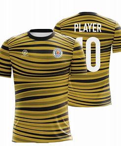 Grand Haven Fan Shirt Gold.jpg
