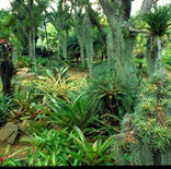 est_gardens022.jpg