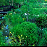 est_gardens013.jpg