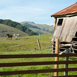 04_DSC_2972_Moore Ranch-LOW RES.jpg