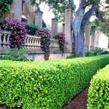 est_gardens019.jpg