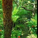 est_gardens044.jpg